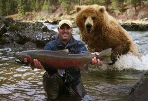 Медвежья услуга или почему медведи не любят геологов