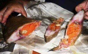 Как закоптить рыбу прямо дома, на кухне