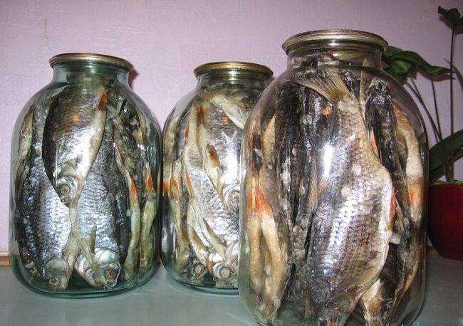 прикорм для рыбалки своими руками