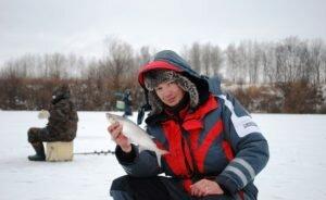 Уловистые наживки для ловли чехони со льда