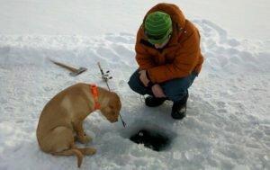 Возможно ли зимой перекормить рыбу? Рыбацкий эксперимент