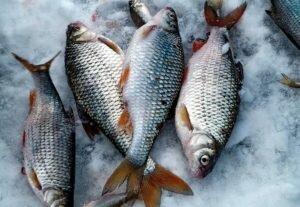 Два СУПЕР рецепта уловистых зимних прикормок для плотвы