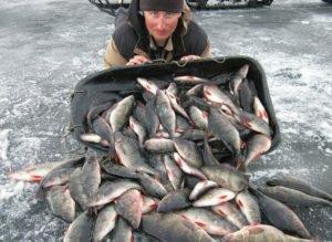 Секрет богатых зимних уловов. Прикормка «Бомба»